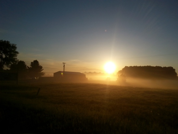 Breaking dawn.