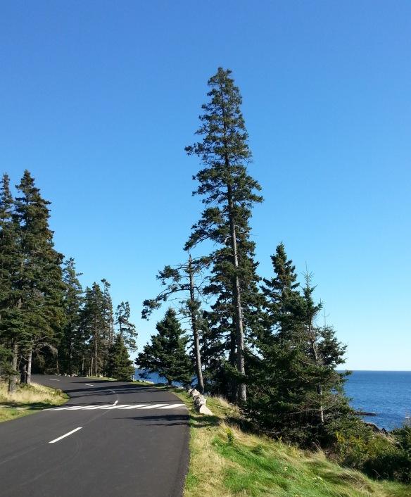 No cars.  Few bikes.  Fewer hikers.