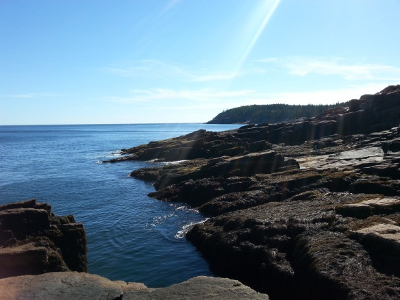 Thunder hole - during high tide, the waves splash up over the top.