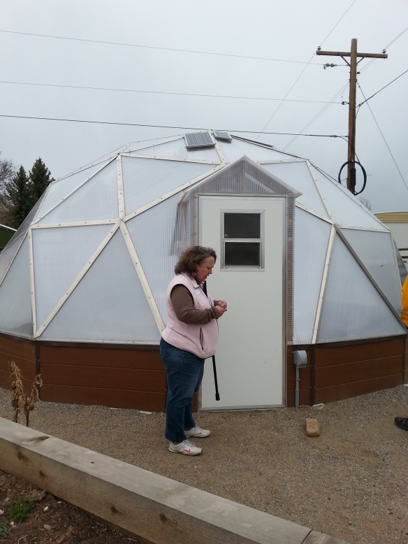 Geodesic Greenhouse.  Fabulous.